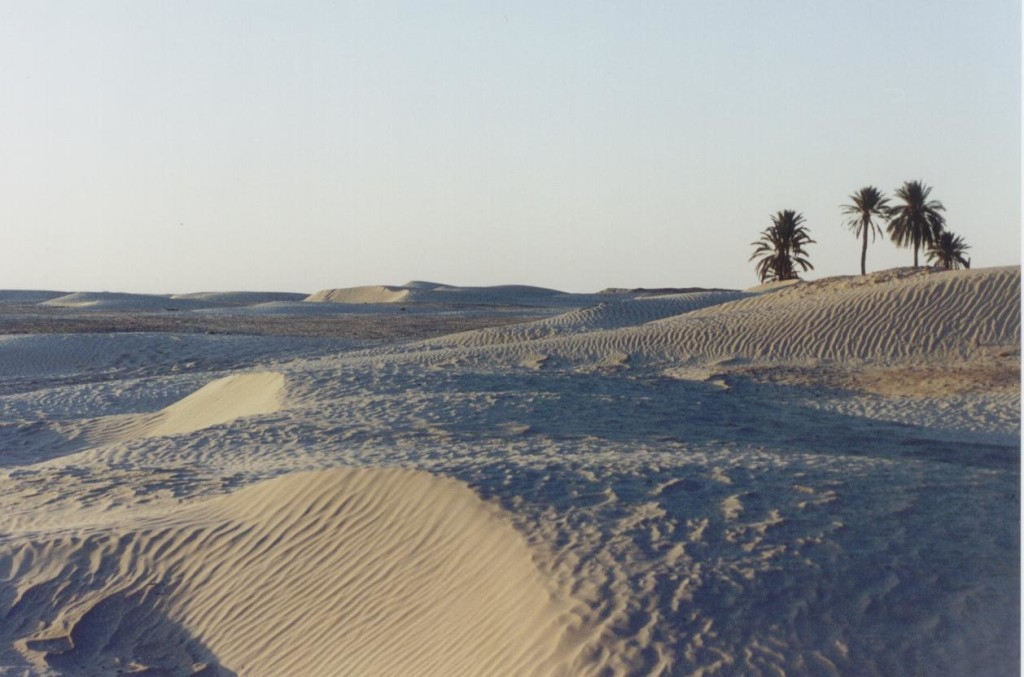 Sahara near Tozeur