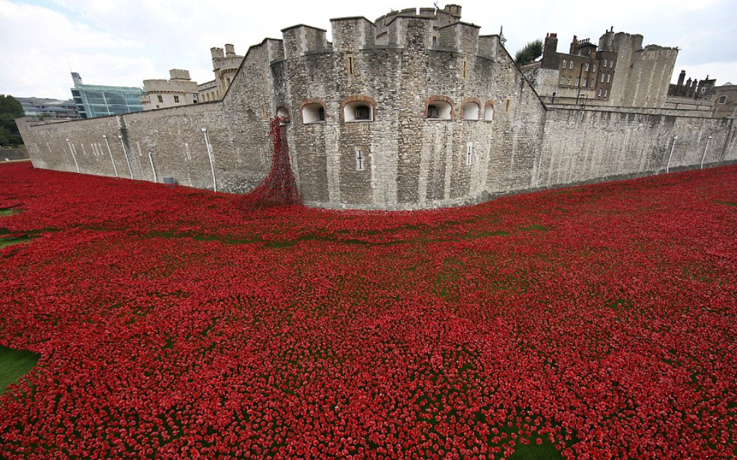The Tower of London Remembers poppies in commemoration of the centenary of WWI