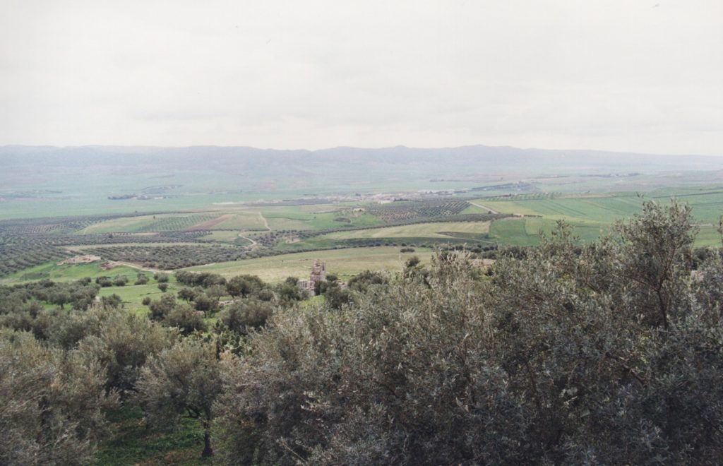 Countryside of Northern Tunisia