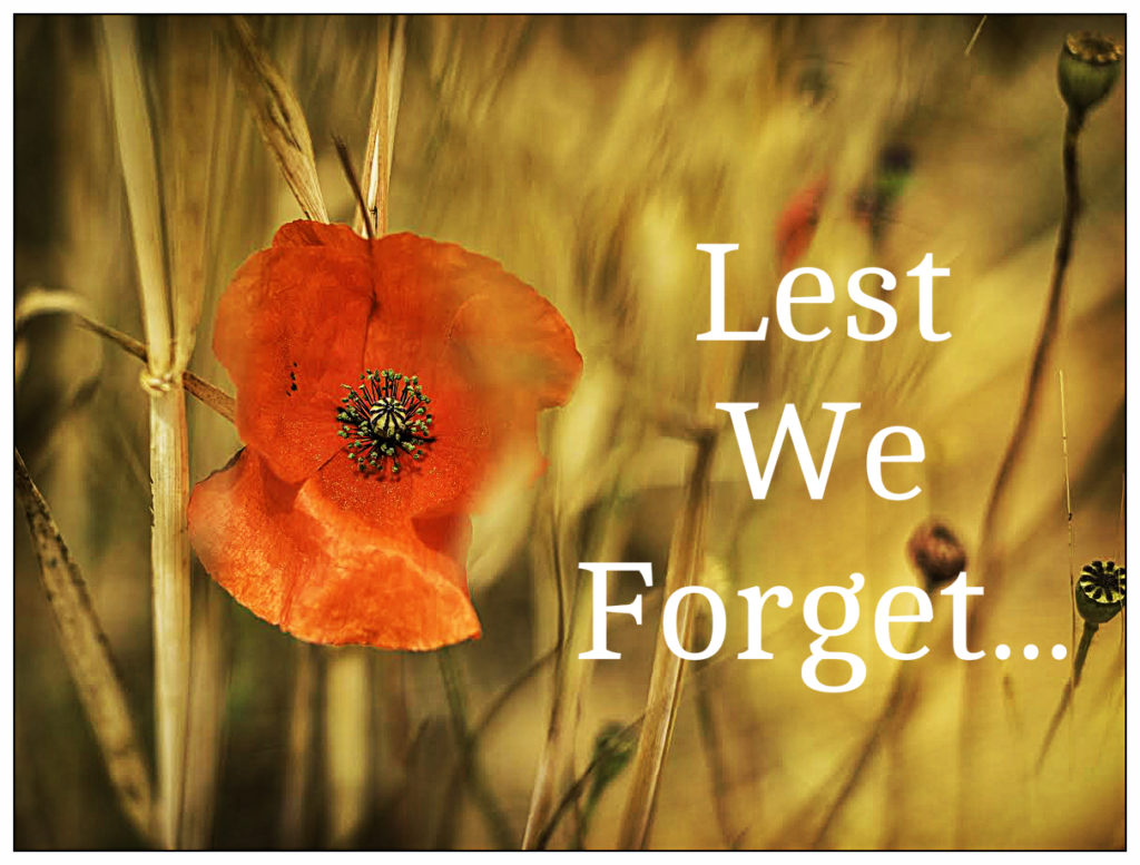 lone-poppy-lest-we-forget