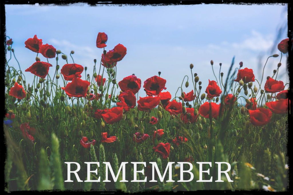 poppy-field-remember-banner